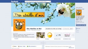 https://www.facebook.com/desabeillesetmoi?ref=hl