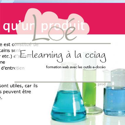E-learning pour la Cciag : formation web avec les outils e-docéo