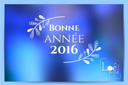 Bonne année 2016 : en route vers les projets